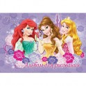 Альбом для рисования 20л, склейка, А4, Princess, D3329/2