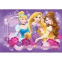 Альбом для рисования 40л, 205x290, Princess, D3332/2