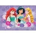Альбом для рисования 40л, склейка, А4, Princess, D3333/2