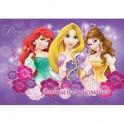 Альбом для рисования 8л, скрепка, А4, Princess, D3337