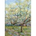 Тетрадь общая 48л,кл,19х26см,скрепка,Art-Blanc,Van Gogh,ACB032