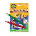 Карандаши цветные 12цв 3-гран BIC Evolution 829735
