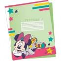 Набор обложек Minnie Mouse д/дневн, тетрад. 5 шт MMCB-US1-PLB-C55