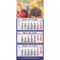 Календарь настенный 2020 Символ года 310*685